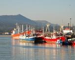 Galicia, comunidad gallega